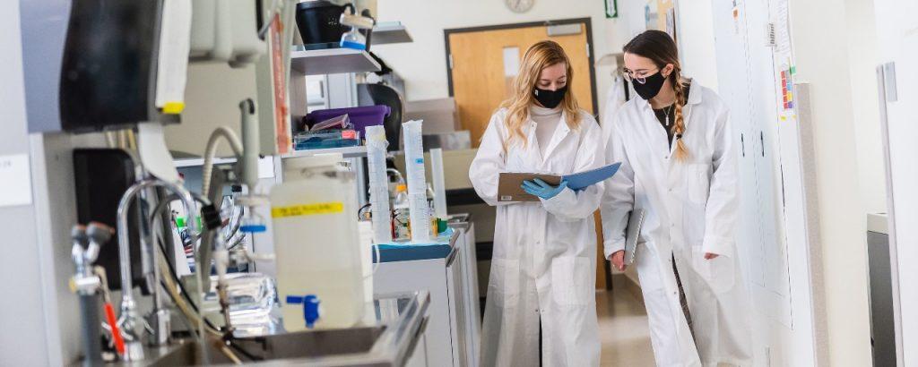 Two researchers talking
